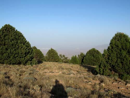 Арчевое редколесье на плато Душака
