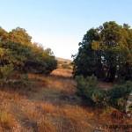 Осенние краски Айрыбаба