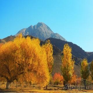 «Золотое утро (гора Маркоу)» Руслан БАЛТАЕВ