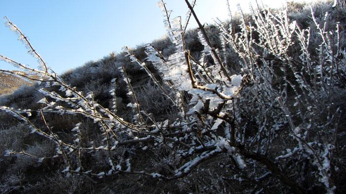 Зимние предгорья