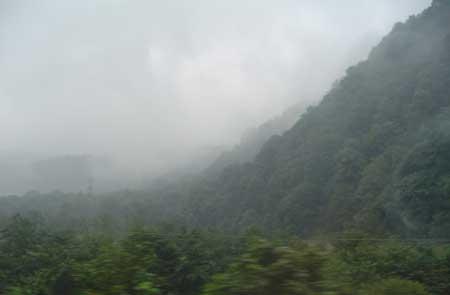Фото 4. Темно-зеленые леса Эльбурса.