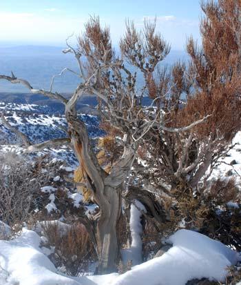 Арча. Айрыбаба - священная гора