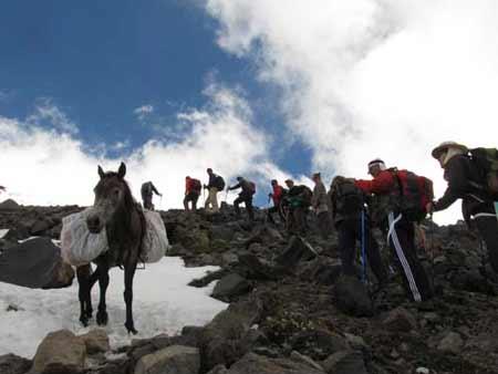 Наши четырехногие помощники. Большой отчет о большой экпедиции (Арарат-2012)