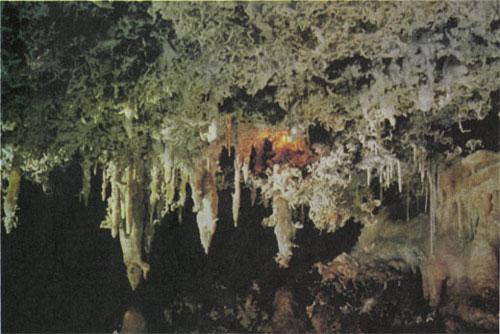 Этот снимок сделан в пещере «Промежуточная», которая находится неподалеку от «Кунсткамеры»