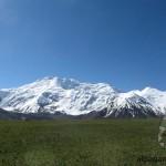 Альпийские луга Памира