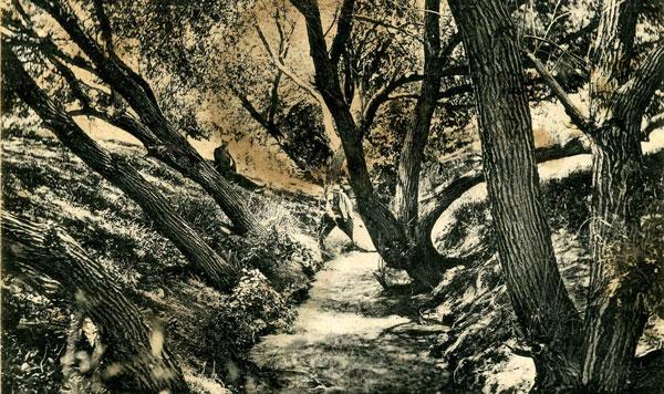 Река от источников Янбаш в окрестностях села Багир. Архивное фото