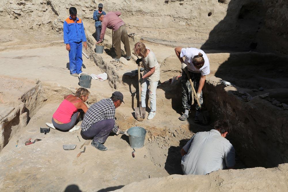 Раскопки на Йылгынлы-депе