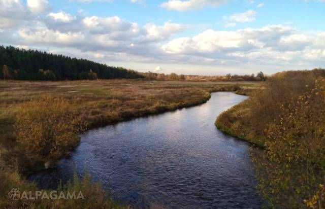 Река Нерехта