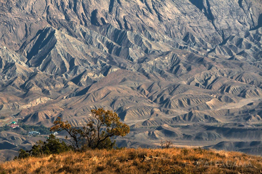 В горах Туркменистана (Кирилл Снарев)